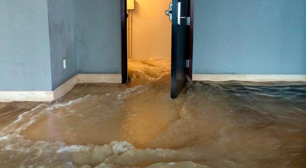 Устранение потопа в квартире